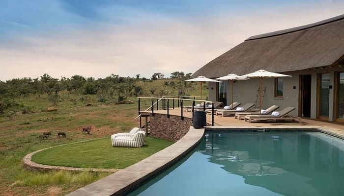 Mhondoro-Game-Lodge-Exclusive-Safari-Lodge-South-Africa