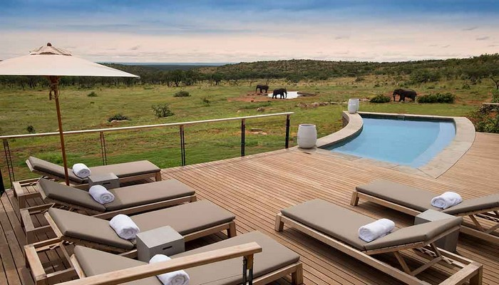 Mhondoro-Game-Lodge-Exclusive-Safari-Lodge-Welgevonden-Pool