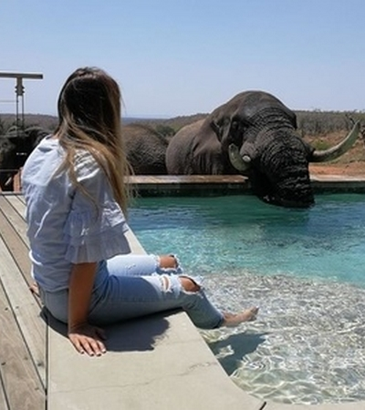 Mhondoro-Safari-Lodge-Villa-Elephant-Day