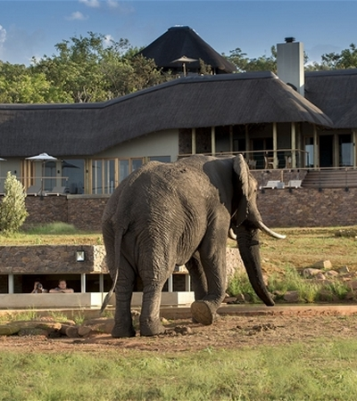 Mhondoro-Safari-Lodge-Villa-Protection (1)